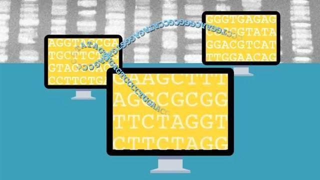 Secret Sharing Keeps GWAS Data Secure
