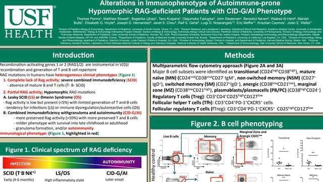 Alterations in Immunophenotype of Autoimmune-prone Hypomorphic RAG-deficient Patients with CID-G/AI Phenotype