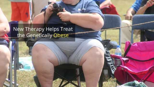 Peptide Therapy Ends Insatiable Hunger in Genetically Obese Patients