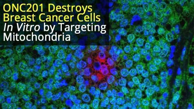 Small Molecule Drug, ONC201, Kills Breast Cancer Cells by Targeting Mitochondria