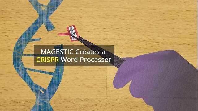 MAGESTIC Turns CRISPR's Rough Scissors into a Precision Tool