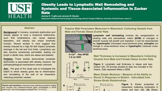 Lymphatic Wall Remodeling with Systemic and Tissue-Associated Inflammation in Obese Zucker Rats