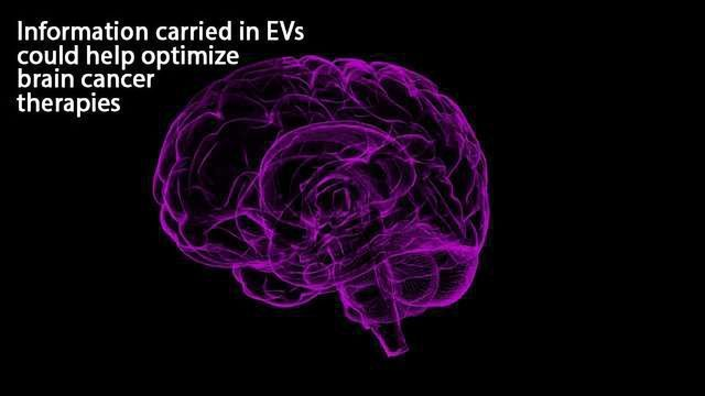 Microfluidic Device Captures Extracellular Vesicles Shed by Brain Tumors