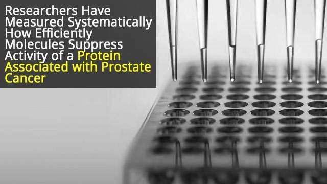 Prostate Cancer: Scientists Screen Molecules to Determine Most Promising as Anti-cancer Drugs