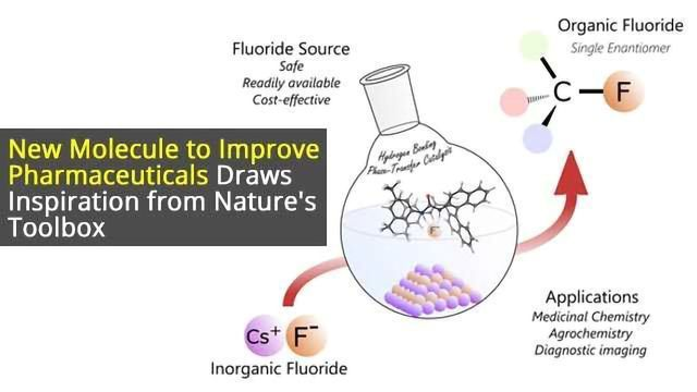 Improving Pharmaceuticals: Catalyst Specifically Tuned to Integrate Fluorine Atoms