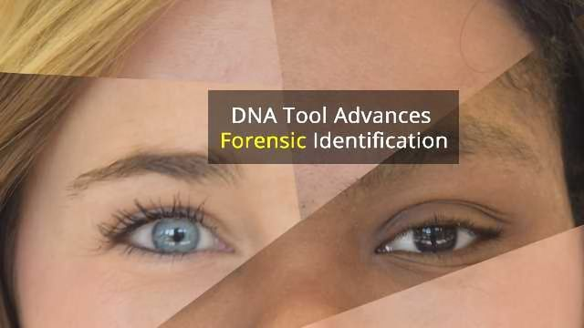 New Tool Predicts Eye, Hair and Skin Color From a DNA Sample