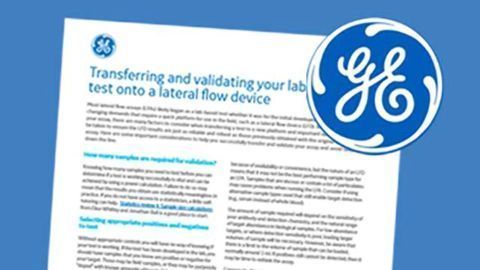 Transferring and Validating your Lab-Based Test onto a Lateral Flow Device [How to Guide]
