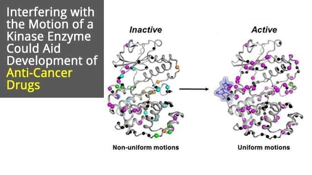 Kinase Enzyme Movement Could Be Key to Novel Cancer Drugs