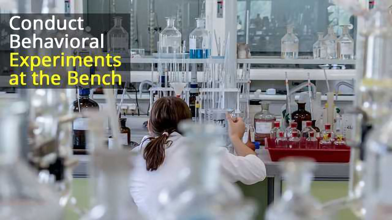 Bringing Behavioral Assays to the Bench