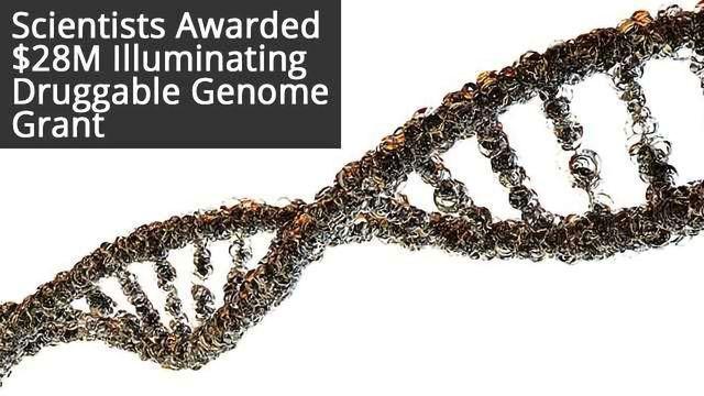 Researchers Awarded $28M for Illuminating Druggable Genome NIH Grants