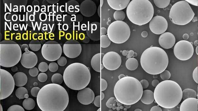 Single-injection Polio Vaccine
