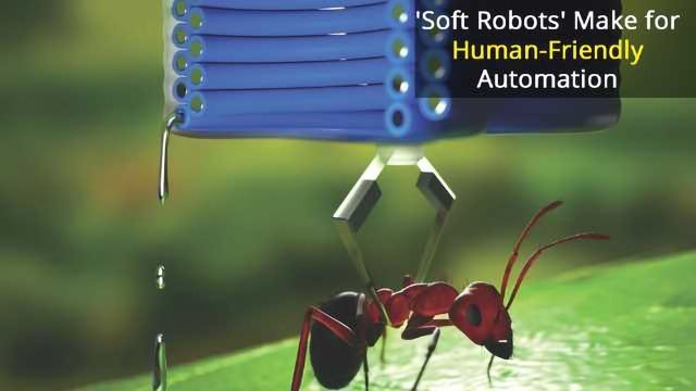 Soft Power: The Rise of Bio-Friendly Robots