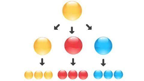 Cell Potency: Totipotent vs Pluripotent vs Multipotent Stem Cells