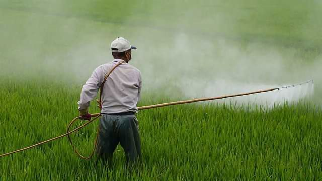 8 Top Tips For Pesticide Screening