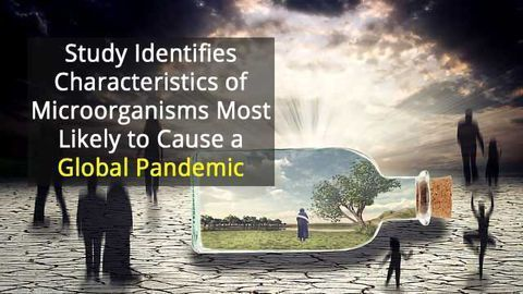 Which Microbes Are Likely to Cause the Next Pandemic?