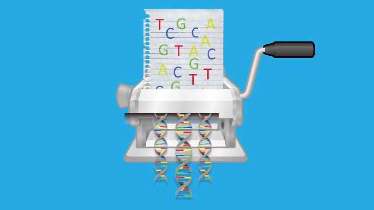 The Gene Factory: Can Enzymes Revolutionize Man-Made DNA Synthesis?