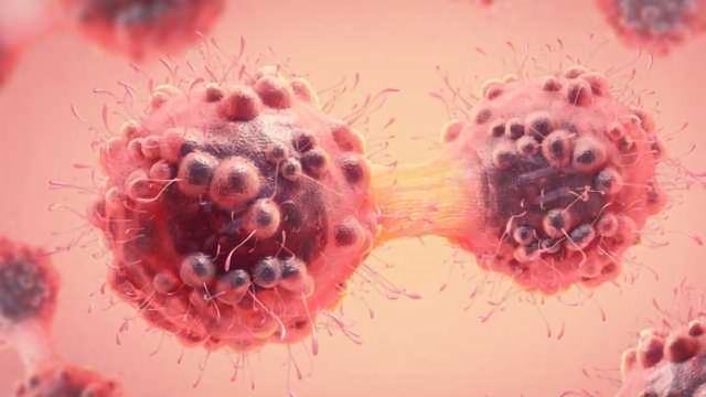 Combination Treatment Against Relapsed Head & Neck Cancer