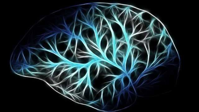 Neuroscientists Review The Importance of GABA Receptors in the Brain