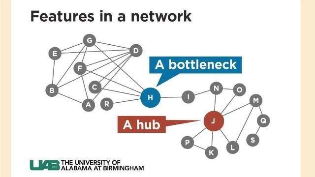 Network Biology Reveals Plant Pathogen Targets