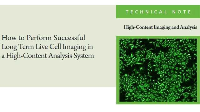 How to Perform Successful Long Term Live Cell Imaging in a High-Content Analysis System