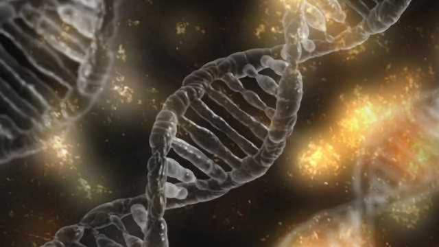 """How """"Cellular Butlers"""" Get Our DNA in Shape"""