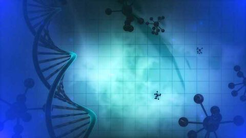 Mysteries of Our Immunity Revealed by Gene Discovery