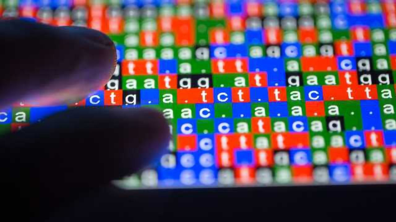 Are Modular Approaches The Way Forward for Bioinformatics?
