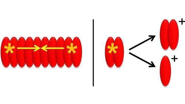 Coherent 2D Spectroscopy Advances