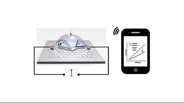 Biosensor Chip Helps SNP Detection Go Wireless