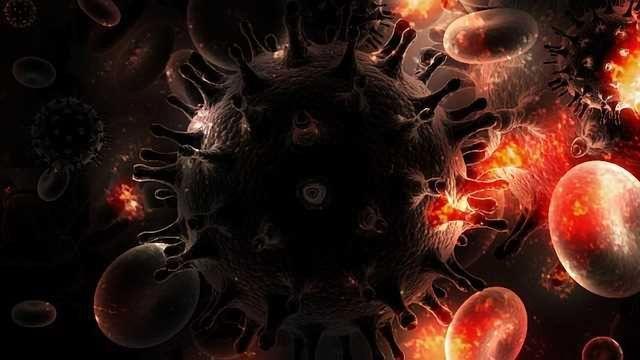 Tool Illuminates Immune Recovery in HIV Patients
