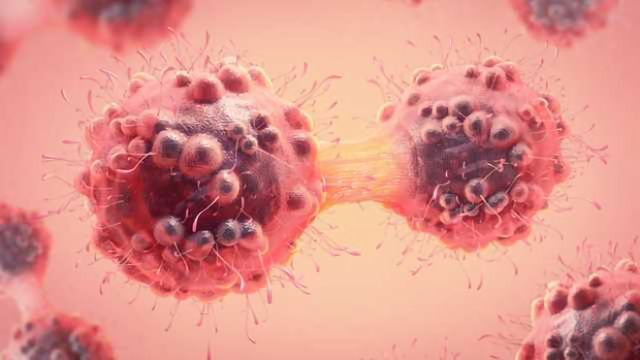 Solving Protein Puzzle Helps to Design New Cancer Drugs