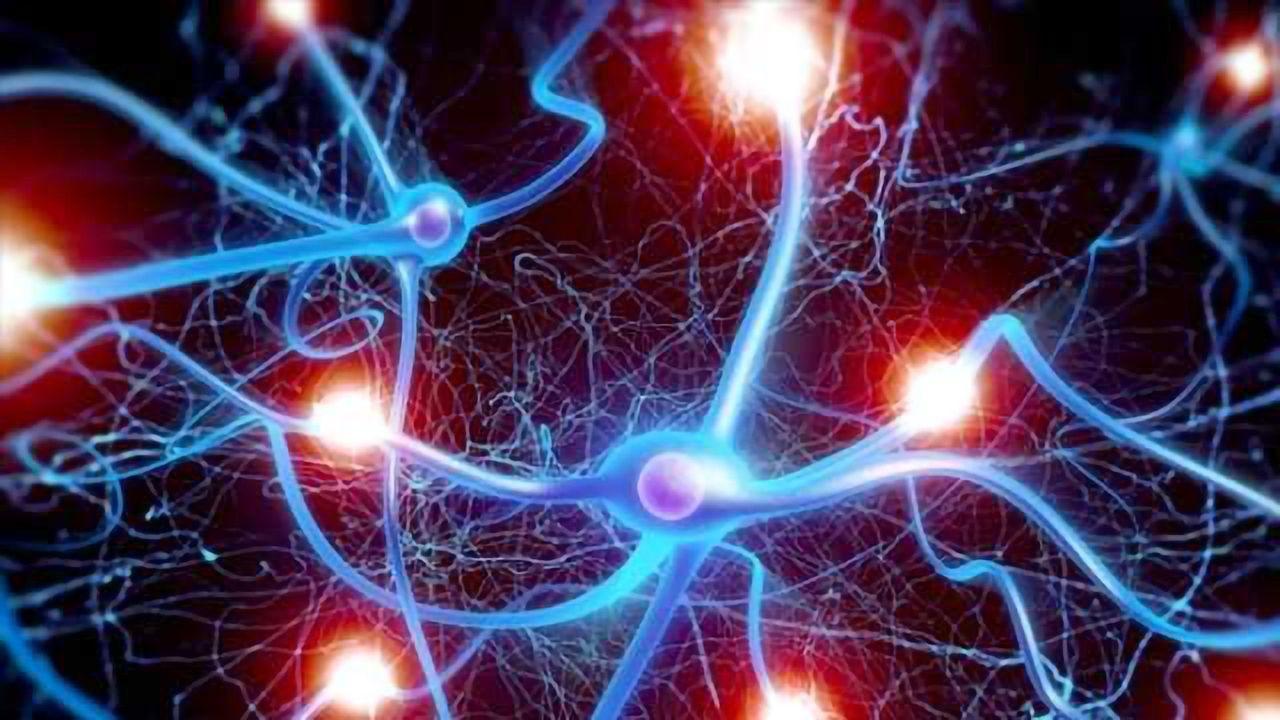 Fetal Gene Therapy Prevents Lethal Neurodegenerative Disease