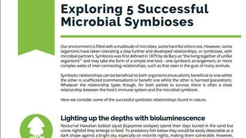 Exploring 5 Successful Microbial Symbioses
