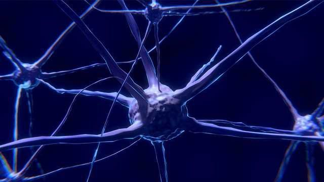 T Cells Attack and Kill Dopamine-Producing Cells in Parkinson's disease