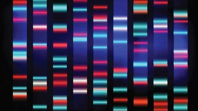 Analytical Tool Predicts Disease-Causing Genes
