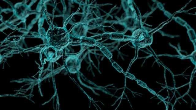 Molecular Key for Delaying Multiple Sclerosis Progression