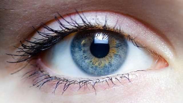 Blindness Gene Identified