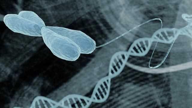 Epigenetics and Drug Discovery
