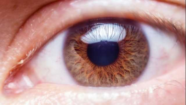 AI Predicts Personality by Tracking Eye Movements