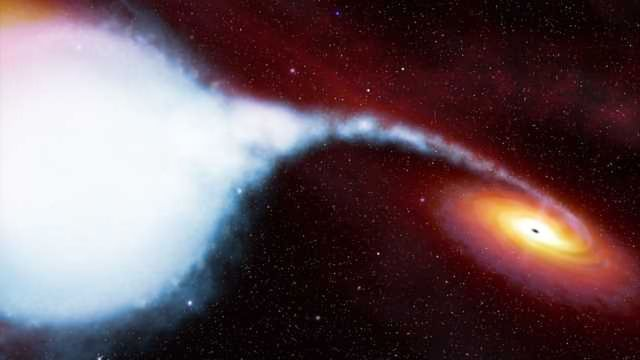 Looking into Black Holes with X-Rays