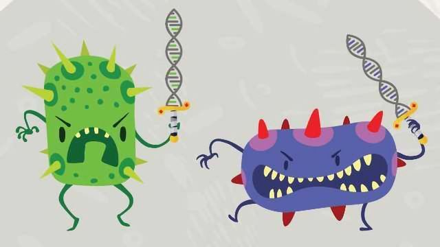 Antimicrobial Resistance: A Microscopic Battle Goes Global