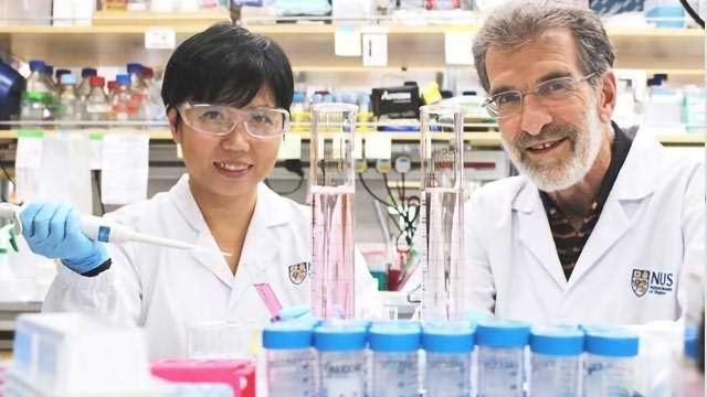 Novel Drug Could Potentially Treat Liver Cancer More Effectively
