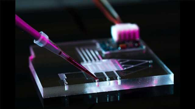 Why is China Becoming a Microfluidics Manufacturing Superpower