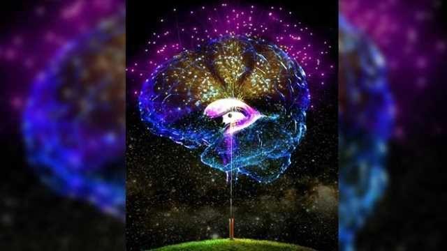 Origin Cells for Deadly Brain Tumors Identified