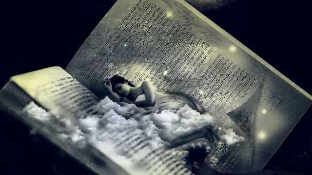 Learning While we Sleep?