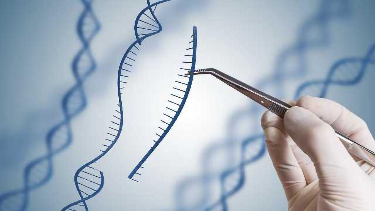 Modified CRISPR-Cas9 Corrects Sickle-Cell Mutation