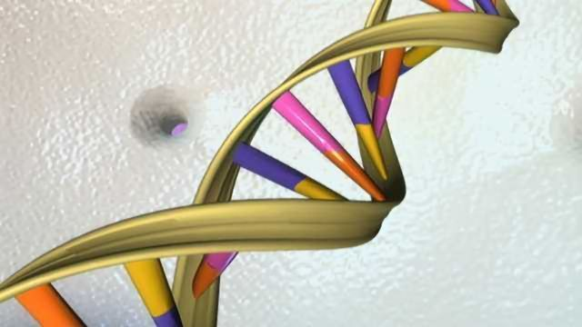 Correcting sickle cell–causing mutation with efficient CRISPR-Cas9 genome editing