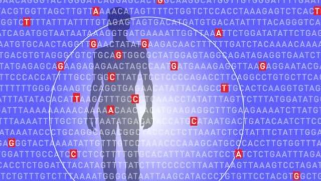 Mgh Study Suggests Genetic Link In >> Keeping Score On Polygenic Risk Factors Technology Networks