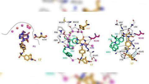 Effective Approach to Optimizing Medicinal Molecules