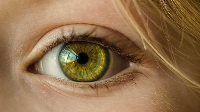 Researchers Reverse Blindness